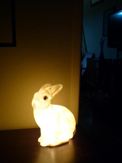 c rabbit