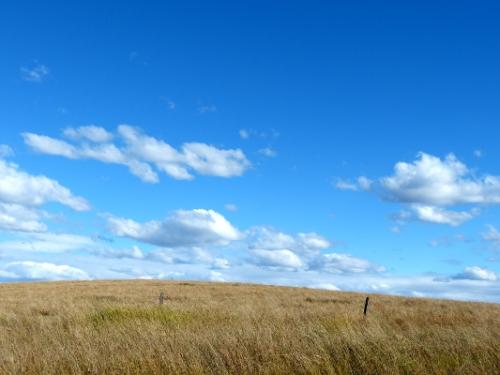 b hillside