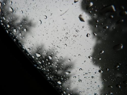 ff rain