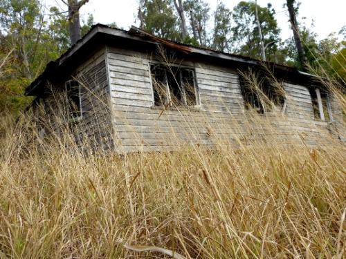 aa hauntedhouse6