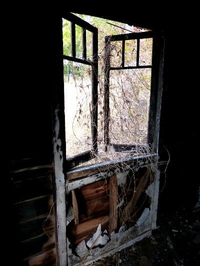 aa hauntedhouse9