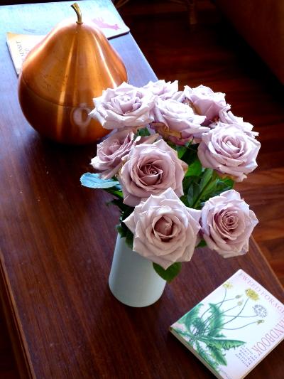 aa roses