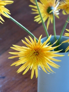 ab flowers3