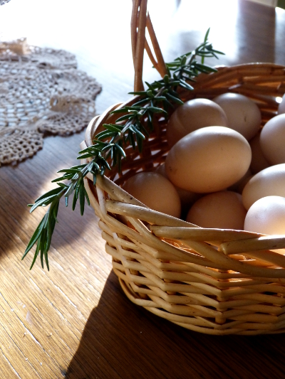 ad eggs